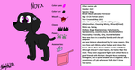 Nora's character sheet 2018 by Niaarts459
