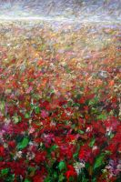 Red Flower Field by zampedroni