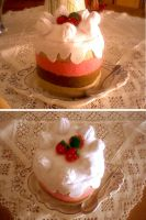 strawberry and chocolate cake by erel883