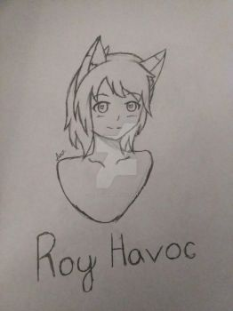 Roy Havoc Sketch