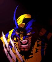 Wolverine by arissuparmanart