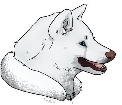 Qannuk Headshot by DenimBirdie