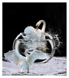 THE LOVE DANCE by IME54-ART
