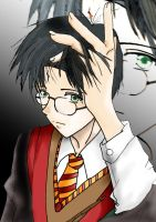 Harry Potter by EvilFairy144