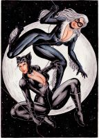 Black Cat Catwoman by gregohq