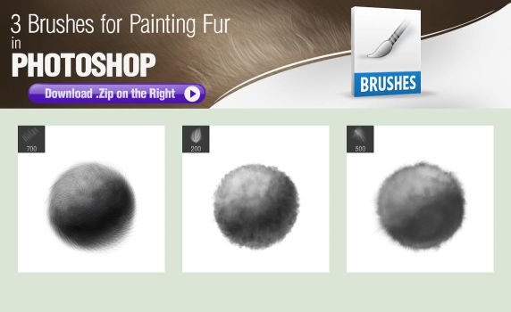 3 Photoshop Brushes for Painting Fur Texture by pixelstains