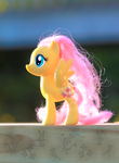 Fluttershy on the Beach Patio, Lit up Mane by AquilaTEagle