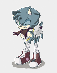 Nimble the hedgehog by hikariviny