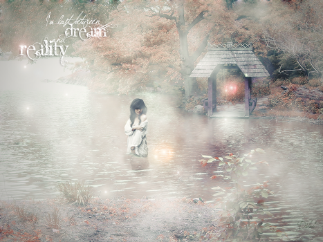 Between Dream and Reality by didoo0501