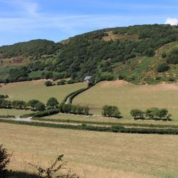View from the Talyllyn train by Brit31