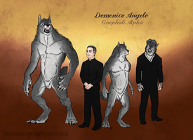 Ref sheet: Domenico Angelo by TeknicolorTiger