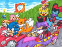 Sonic Team Kart by sonicgirl11
