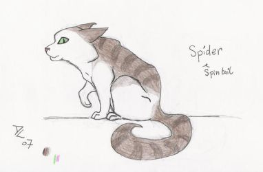 Spintail by DarkCarmen
