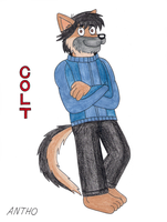 Colt, The German shepherd by AnthoFur