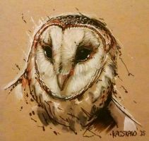 Barn Owl (charcoal and markers test) by Kaliskano