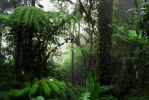 Costa Rica - Cloud Forest 2 by LLukeBE