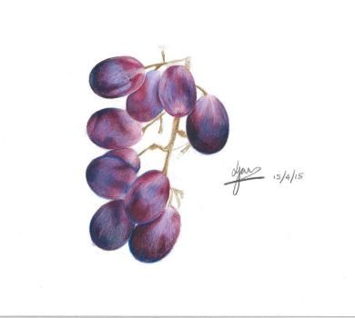 Grapes by Jam1992