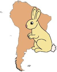 South American Bunny :D by Stethoscope-face
