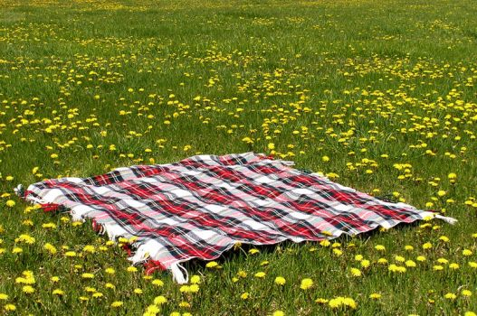 Picnic Blanket in Field 3 by loopyker-stock