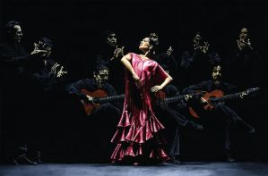 Bailarina orgullosa d flamenco by ryoung