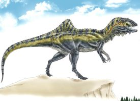 Concavenator corcovatus by Durbed