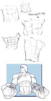 Day 9 Rectus Abdominus by otakutaylor