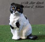 Black and White Scottish Fold Cat by ElkStarRanchArtwork
