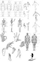 Figure Drawing class to date by Dualmask
