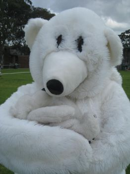 Yr 12 Muck Up Day - Polar Bear and Baby! by I-Have-A-Jar-Of-Dirt