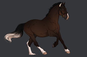 Horse design | Commission by Pashiino