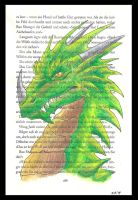 Green Dragon on a page by Psydrache