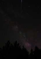 Milkyway over Pines by Caitiekabob