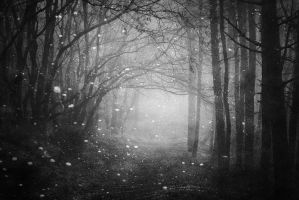 The End by TheOn3LeftBehind