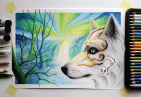 White wolf drawing by Bajan-Art