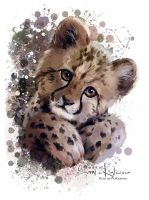 Cheetah by Kajenna