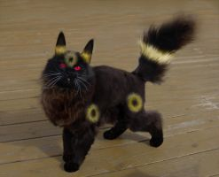 Murre the Umbreon