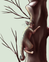 Daily WarriorCats - #004 Alder by Tefassh