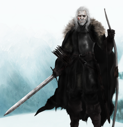 Lord Commander Brynden Rivers by Mike-Hallstein