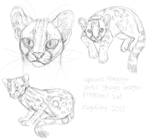 margays.png by pawpplio