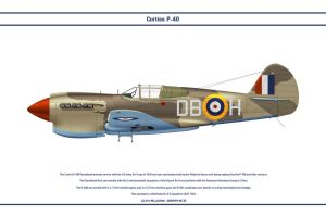 P-40E South Africa 2 Sqn by WS-Clave
