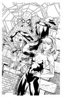 Spidey and Gwen Inks by aethibert