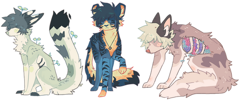 adopts! open by wqlf