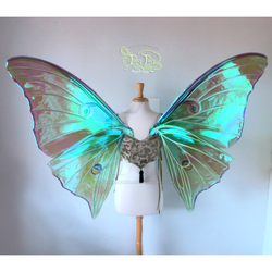 Extra Large Painted Luna Moth Wings (sans tails) by FaeryAzarelle