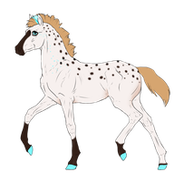 N3455 Padro Foal Design by casinuba