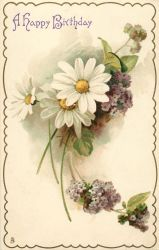 Daisy Days by Yesterdays-Paper