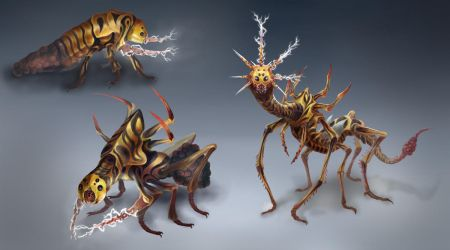 Thunder Bug Life Cycle by OrmIrian