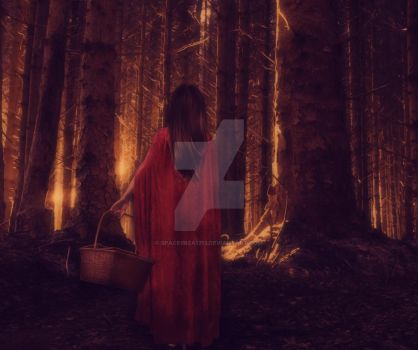 Little Red Riding Hood by spaceibiza1313