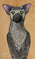 Day #25 Trico by CauseTears