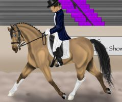 The Lady of the Dance by SilverBrooke-Stables