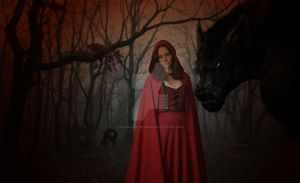 Red Ridding Hood by 2old2care-anymore